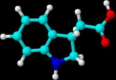 Калиевая соль гетероауксина