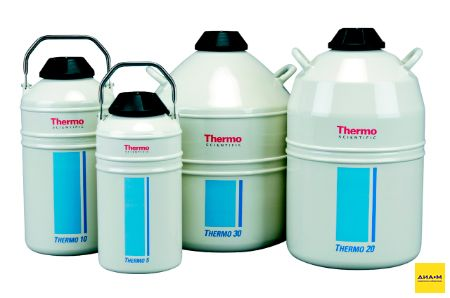 Криоконтейнер 20 л, Thermo Series 20, Thermo FS
